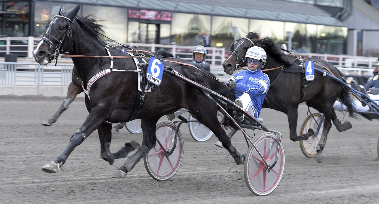 Cash Mearas, trav, Readly Express, Stall Henessi, Henessi, Global Seduction,